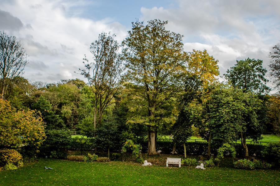 room merebrook pic6